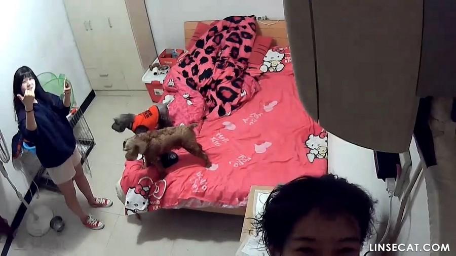 入侵(Hacking)家庭监控摄像头: 中国女同性恋人月经期间的性爱, 指交